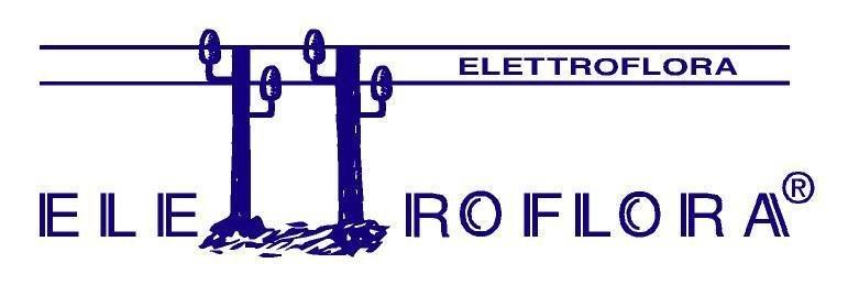 Elettroflora di Massimiliano Lodi